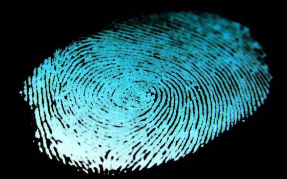 Curso online sobre el trabajo del Detective Privado e Investigación Policial