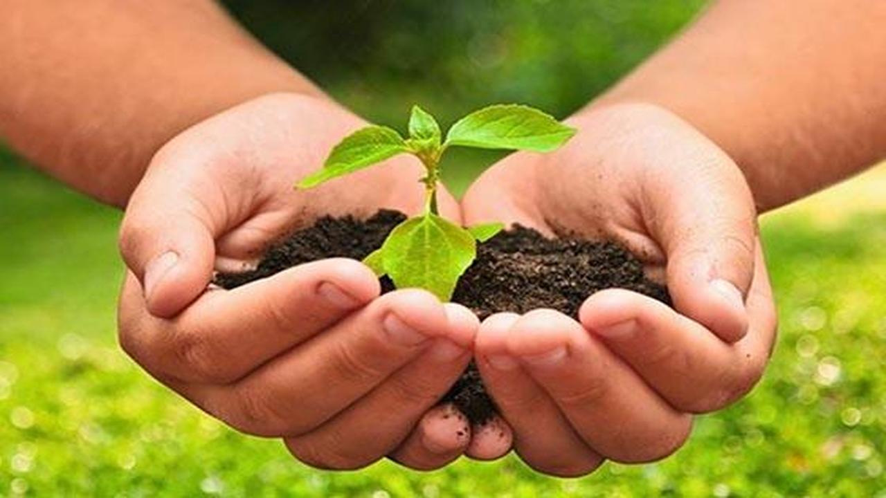 Curso en línea (Online) de Agroecología - Aprendum