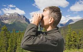 Curso online de Control y Protección del Medio Natural