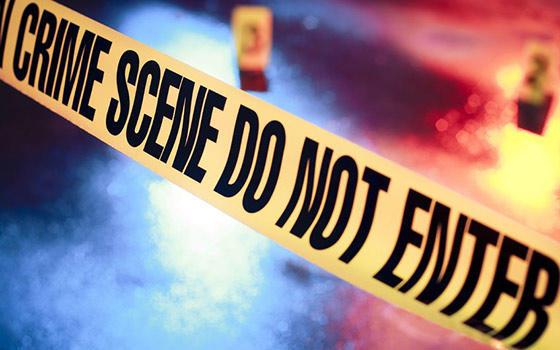 Máster online en Criminología