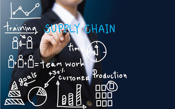 Postgrado online en Logística y Supply Chain (Certificación Universitaria)